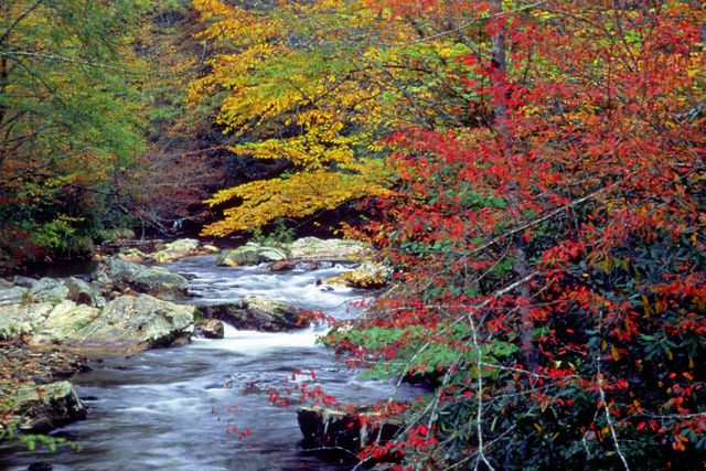 Cataloochee in the great smoky mountains